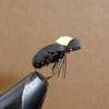 Beetle, Hi Vis Black Foam