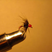 Soft Hackle Jody's Ruby Gem