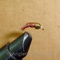 Caddis Larva Brown