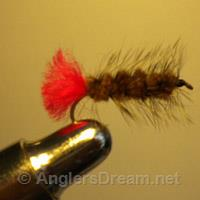Wooly Worm Brown/Red