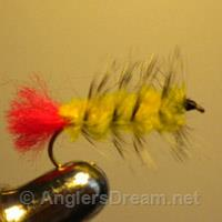 Wooly Worm Yellow/Red